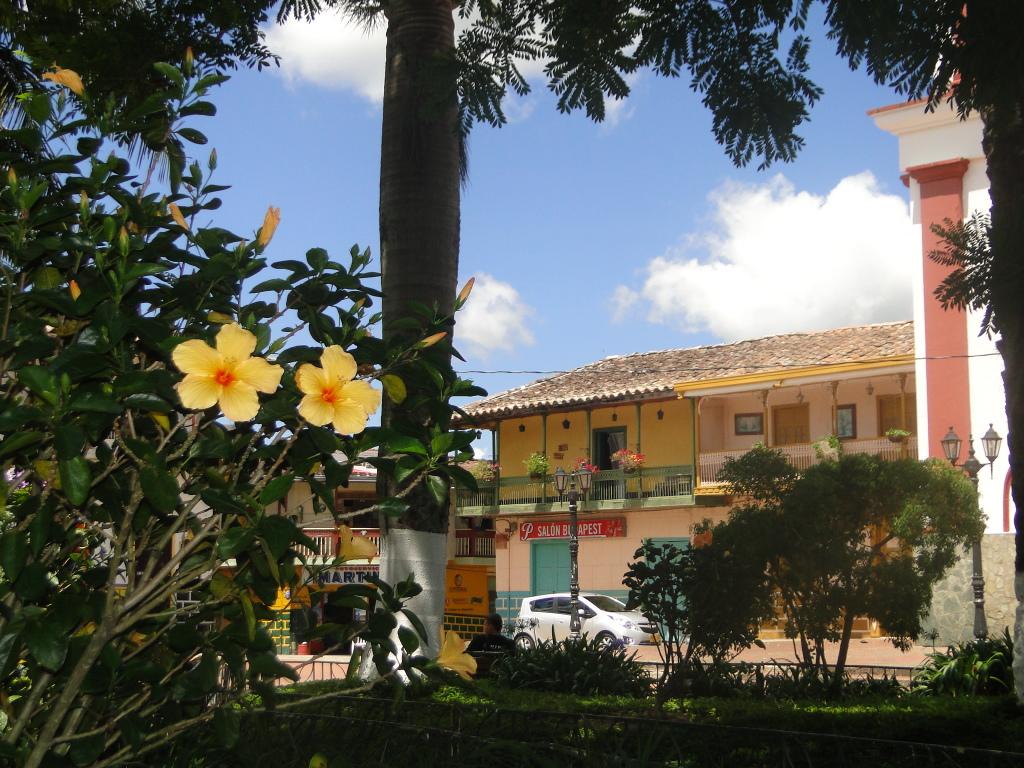 Hermosa Plaza y Parque Central.