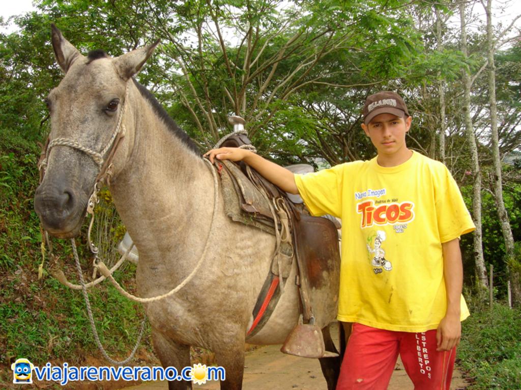 Joven y caballo.
