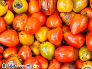 Frutas de Chontaduro.