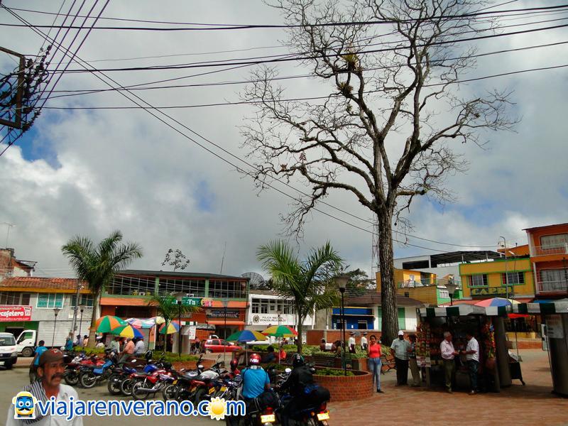 Parque de Palocabildo