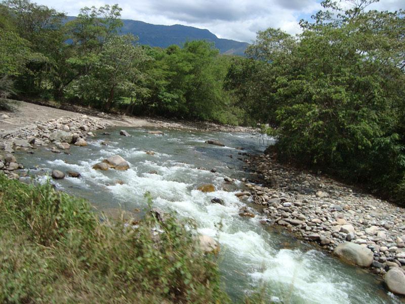Río entre piedras.