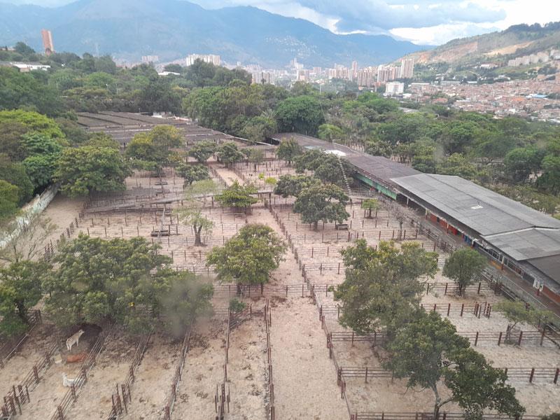 Feria.